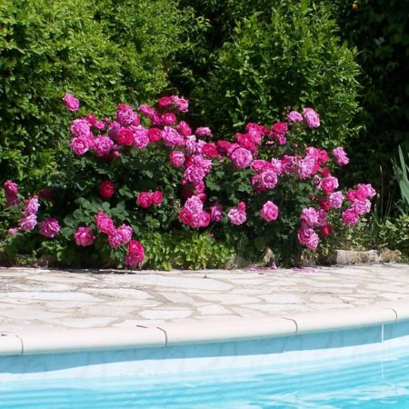 Chambres d'Hôtes La Belle Demeure, en Dordogne, au cœur du Périgord Noir, proche de Sarlat. Les lits douillets sont équipés de linge 100% coton en Seersucker. Salle d'eau attenante à chaque chambre. Suite Familiale. Table d'hôtes et Piscine. Consultez nos tarifs sur notre site internet.
